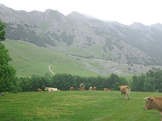 Aizkorri - Another view of the Urbia meadows