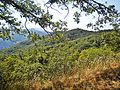 Val di Mezzana-paesaggio 13.jpg