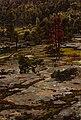 Victor Westerholm - From the Hills of Knutsboda - A II 928 - Finnish National Gallery.jpg