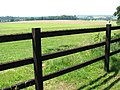 View across the fence - geograph.org.uk - 1378744.jpg