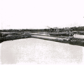 View of A Turtle Farm, Fukagawa, Tokyo, Japan - Popular Mechanics 1905.png