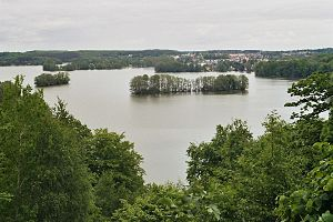 View to the lake Feldberger Haussee from Reiherberg.jpg