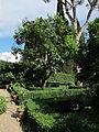 Villa i tatti, ext., giardino 02.JPG