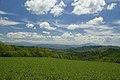 Vista verso sud - panoramio (1).jpg