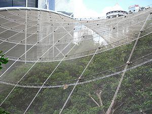 Hong Kong Park - Edward Youde Aviary