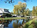 Voight Creek Fish Hatchery, Orting, WA - panoramio.jpg