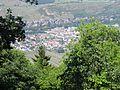 Vue depuis le château du Hohlandsbourg (654 m) - ville (Turckheim).jpg