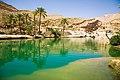 Wadi Bani Khalid (1).jpg