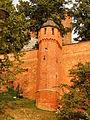 Wawel mur.JPG