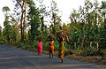 Wayanad - Aboriginal people carrying firewood.jpg