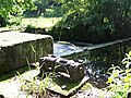 Weir Gear Near ... Loxley Fisheries - geograph.org.uk - 1014797.jpg