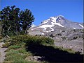 West Face, Mount Hood, OR 9-1-13 (9712634084).jpg