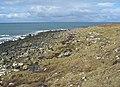 West coast of Trotternish - geograph.org.uk - 756226.jpg