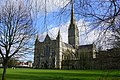 West end of Salisbury cathedral - geograph.org.uk - 1075361.jpg