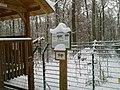 Wildpark im Winter Luchsgehege - panoramio - hartmut bach.jpg