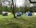 Willesley Scout camp.jpg