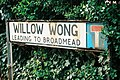 Willow Wong, Burton Joyce - geograph.org.uk - 495373.jpg