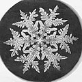 Wilson A. Bentley snowflake, 1890.jpg
