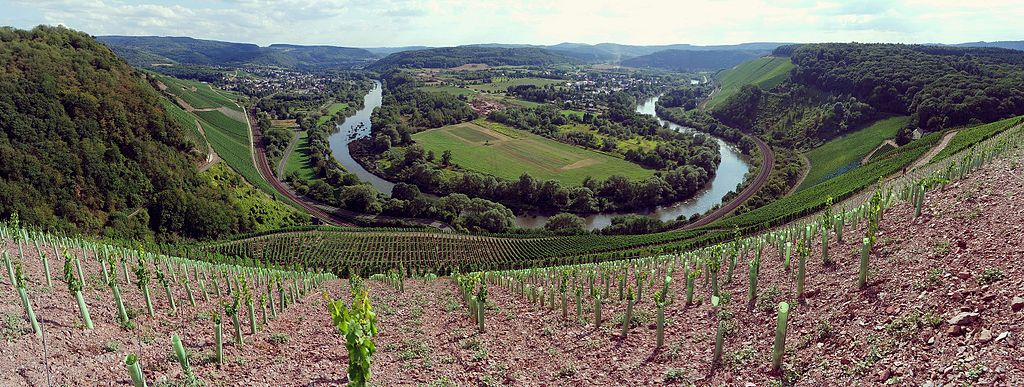 Wiltinger Saarbogen. Sehenswürdigkeit in der Nähe vom Saar-Radweg