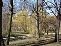 Wiosna wystartowała ,-)) 13 - panoramio.jpg