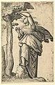 Woman in Roman Costume Picking Fruit from a Tree MET DP820868.jpg