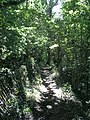 Wooded section of footpath 2874 - geograph.org.uk - 239666.jpg