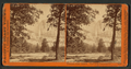 Yosemite Falls, 2634 ft.,View from Camp Grove, Yosemite Valley, Mariposa County, Cal, by Watkins, Carleton E., 1829-1916.png