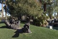 """The Dreamer"" sculpture, by David Phelps, in Palm Desert, California's, Civic Center Park LCCN2013631321.tif"