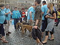 'Greyhound Activists' at Grand Place in Brussels..jpg