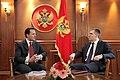 Επίσκεψη ΥΠΕΞ κ. Δ. Δρούτσα σε Μαυροβούνιο - Visit of FM D. Droutsas to Montenegro (5395291894).jpg