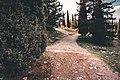 Υμηττός Δρόμος-6.jpg