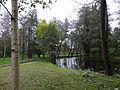Вид на пруд со стороны улицы Чекистов парковой зоны вдоль Петергофского шоссе Красносельского района Санкт-Петербурга.jpg