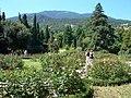 Галерея роз - panoramio.jpg