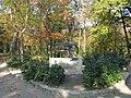 Державний дендрологічний парк «Олександрія» 003.JPG