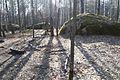 Камінне село, березень 3.jpg