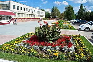 Ladyzhyn - Image: Ладижинська міська рада. Площа