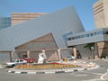 Международный онкологический центр Шиба.png