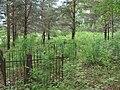 Мемориальное кладбище жертв политических репрессий Макариха. Котлас (06).JPG