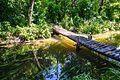 Мост через речку Усмань - panoramio.jpg