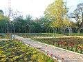 Одеса, Ботанічний сад, Французький бульвар 04-2018 11.jpg