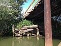 Опоры старого и нового мостов - panoramio.jpg
