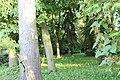 Острозький парк-травневий день.jpg
