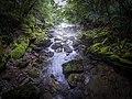 Посебни резерват природе Кањон Цврцке 3.jpg