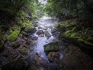 Cvrcka - Image: Посебни резерват природе Кањон Цврцке 3