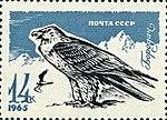 Почтовая марка СССР № 3289. 1965. Хищные птицы.jpg