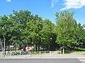 Пушкин, Софийский бульвар (у пересечения с Московским шоссе).jpg