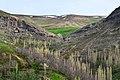 نمایی از اطراف روستای آلمالو - panoramio (2).jpg
