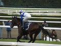 ロードカナロア引退式 - 京都競馬場 - Retirement ceremony of Lord Kanaloa - Kyoto Racecourse (12050227883).jpg