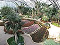 南山植物园-温室景色 - panoramio.jpg
