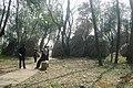 杭州. 登将台山(排衙石诗刻) - panoramio (6).jpg